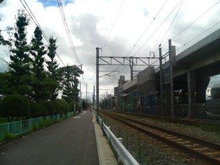 DSC01317.JPG